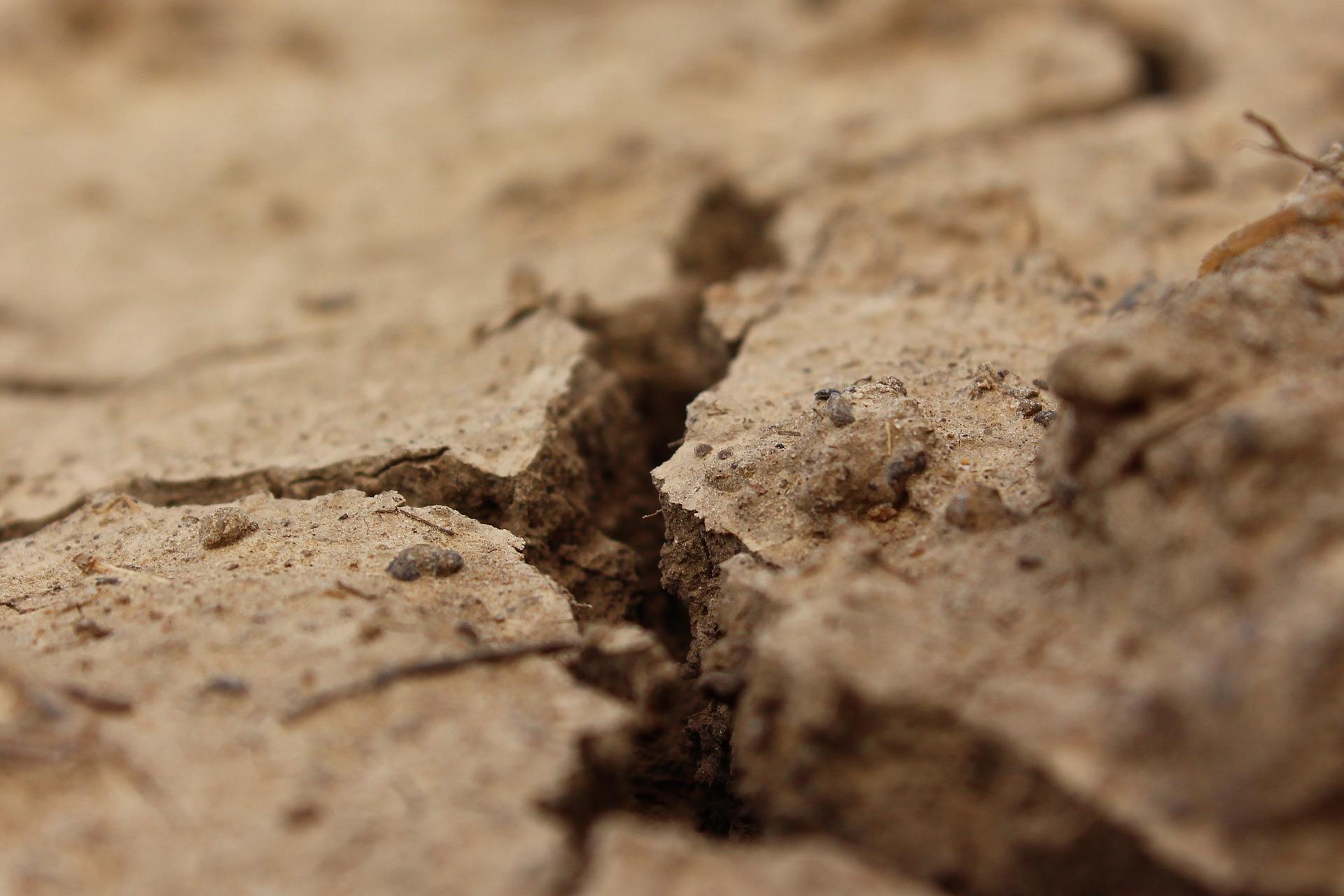 Bad Soil